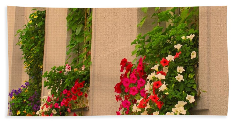 Flowers Beach Towel featuring the photograph Cascading Windows by Ian MacDonald