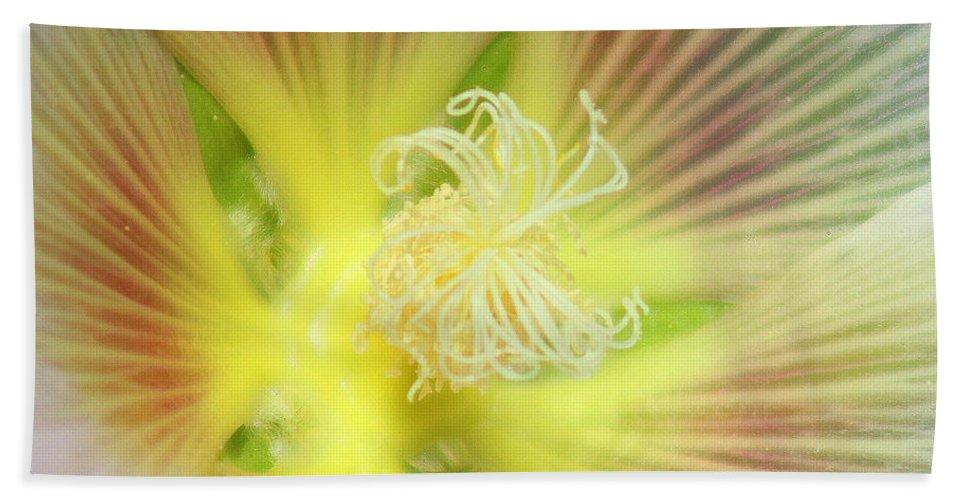 Yellow Flower Beach Towel featuring the photograph Center Sensation by Matthew Wilson