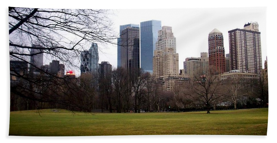 Central Park Beach Towel featuring the photograph Central Park by Anita Burgermeister