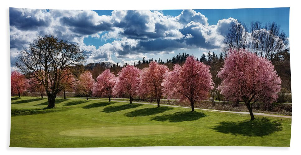 Cherry Tree Beach Towel featuring the photograph Cherry Tree Bloom Color by Mike Penney