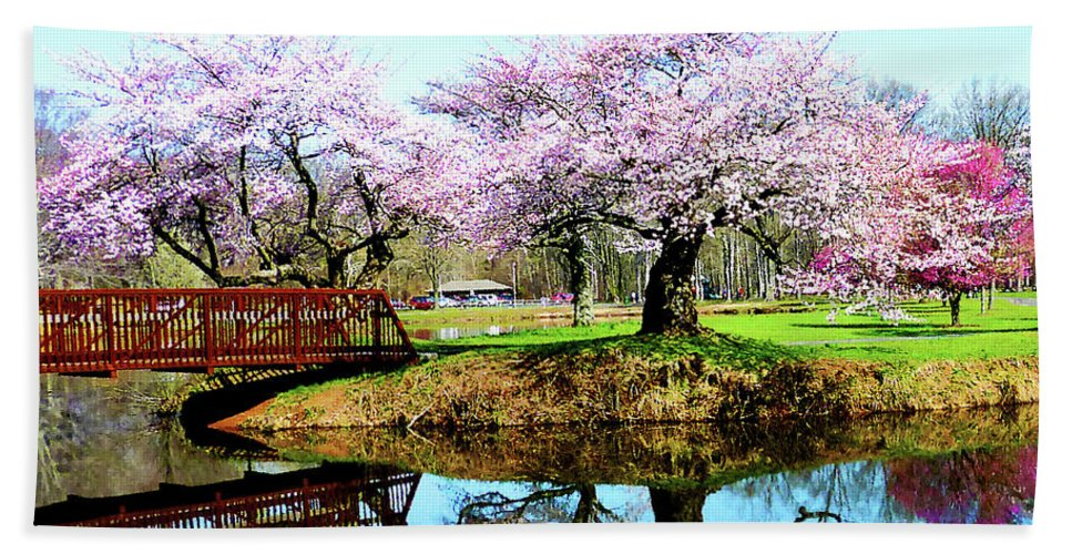 Cherry Tree Beach Towel featuring the photograph Cherry Trees In The Park by Susan Savad