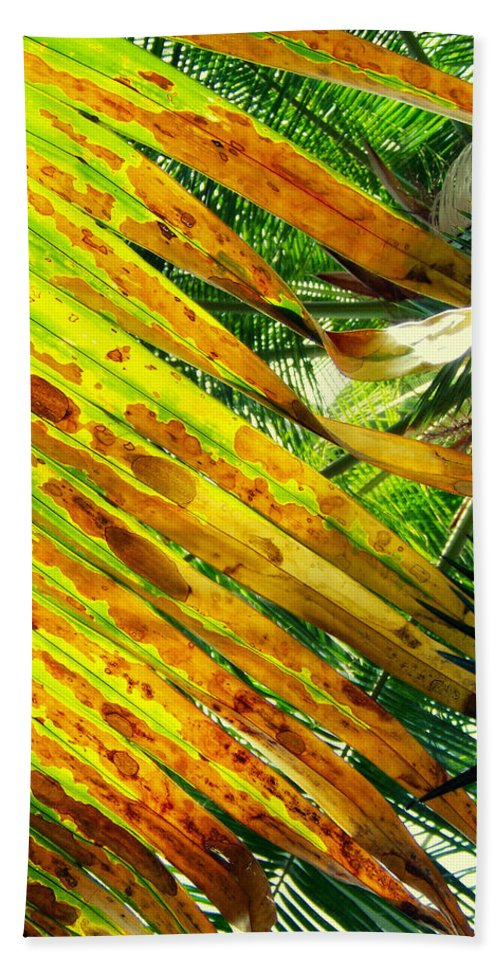 Garfield Park Conservatory Beach Towel featuring the photograph Chicago Palm House by Kyle Hanson