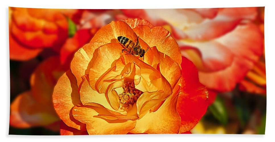 Floral Beach Towel featuring the photograph Chihuly Rose With Bee by Emerald Studio Photography