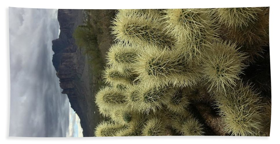Cactus Beach Towel featuring the digital art Cholla Cactus by Steve Winden