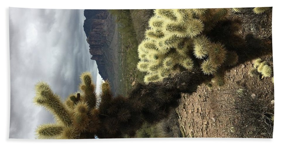 Cactus Cholla Beach Towel featuring the digital art Cholla by Steve Winden