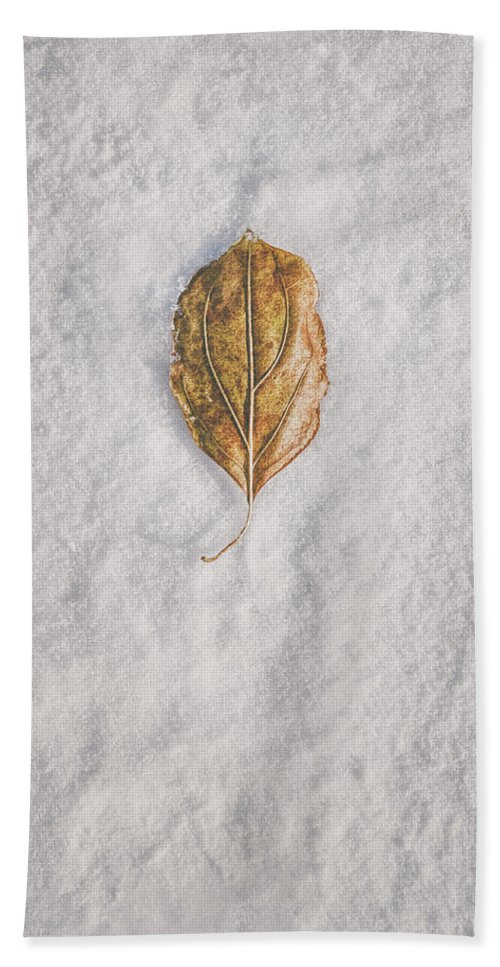 Snow Beach Towel featuring the photograph Clash Of Seasons by Scott Norris