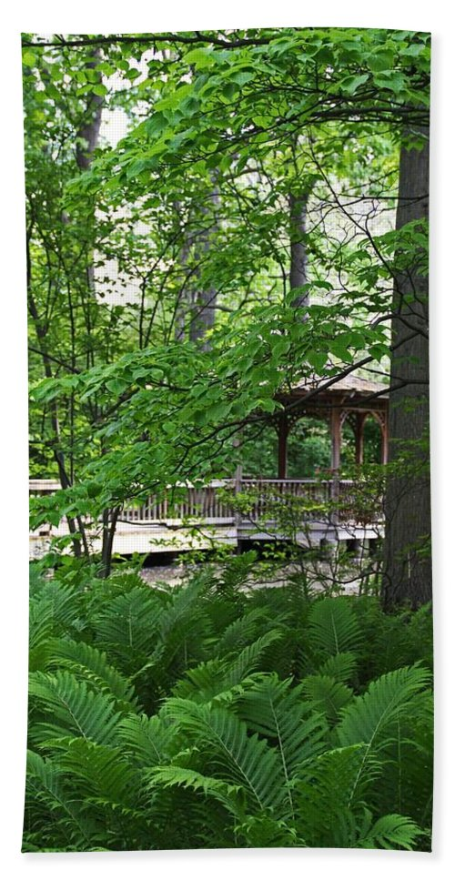 Nature Beach Towel featuring the photograph Classic Solitude by Michiale Schneider