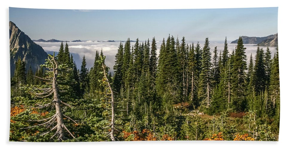 Clouds Beach Towel featuring the photograph Cloud Layer by Albert Seger