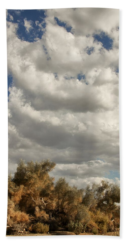 Desert Beach Towel featuring the photograph Clouds Rising Palm Springs by William Dey