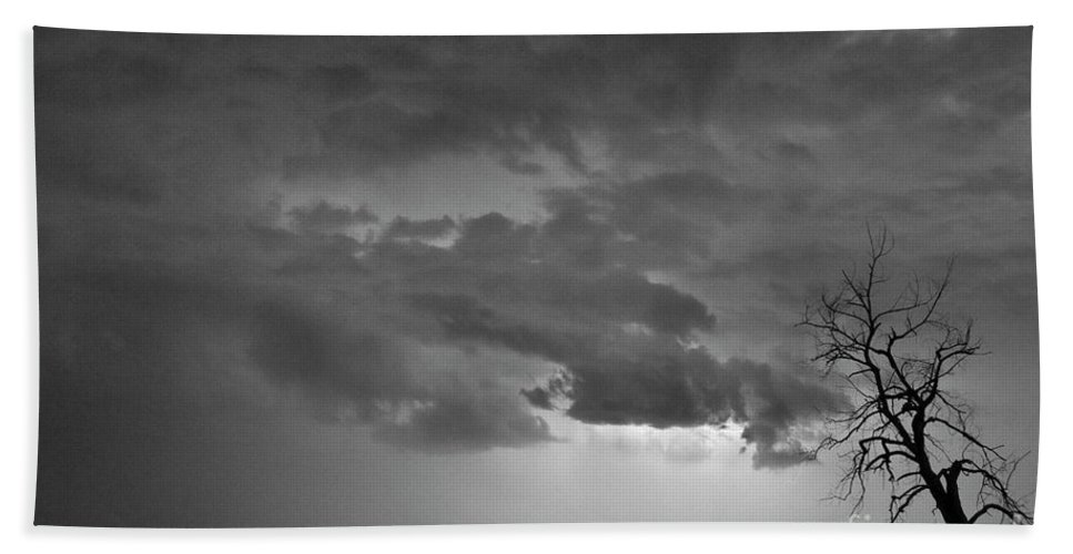 Tree Beach Towel featuring the photograph Co Cloud To Cloud Lightning Thunderstorm 27 Bw by James BO Insogna