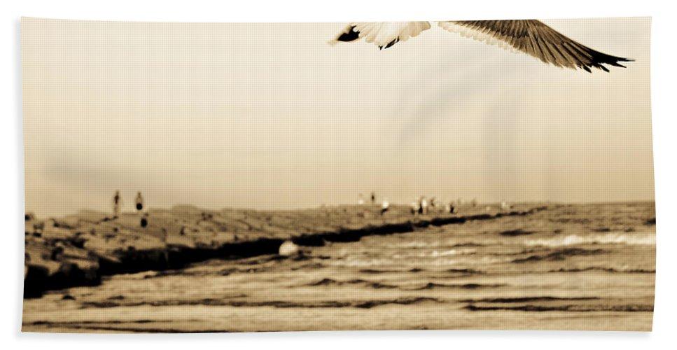 Bird Beach Towel featuring the photograph Coastal Bird In Flight by Marilyn Hunt