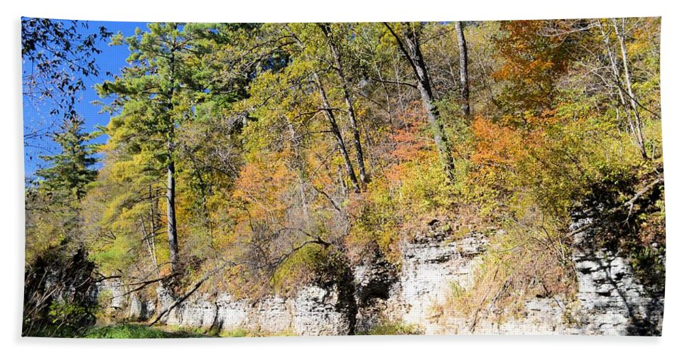 Autumn Beach Towel featuring the photograph Coldwater Trout Stream by Bonfire Photography