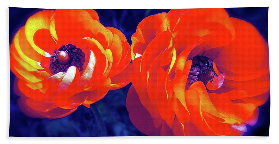 Flowers Beach Towel featuring the photograph Color 12 by Pamela Cooper