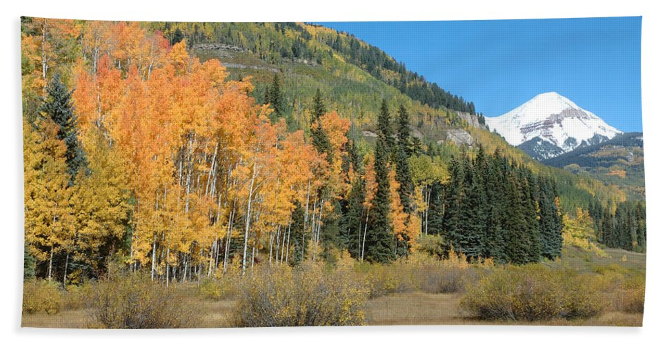 Aspen Beach Towel featuring the photograph Colorado Gold by Jerry McElroy