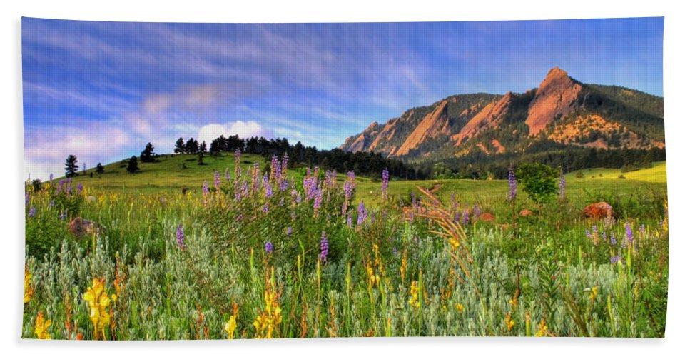 Colorado Beach Towel featuring the photograph Colorado Wildflowers by Scott Mahon