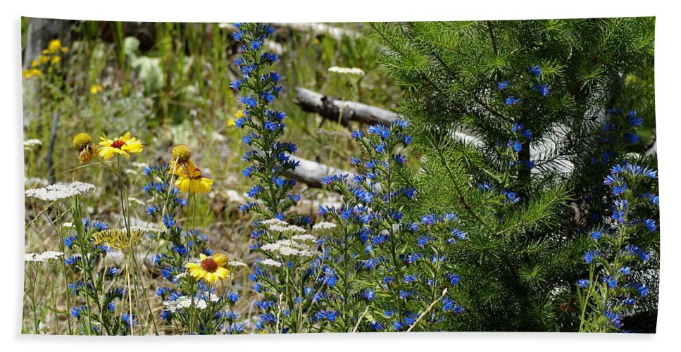 Flowers Beach Towel featuring the photograph Colors Of Spring by Ben Upham III