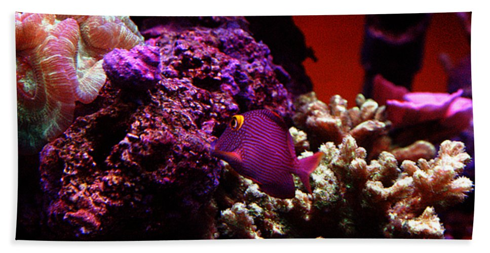 All Rights Reserved Beach Towel featuring the photograph Colors of Underwater Life by Clayton Bruster