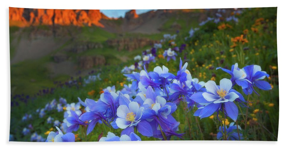 Colorado Beach Towel featuring the photograph Columbine Sunrise by Darren White
