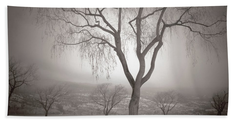 Summerland Beach Towel featuring the photograph Composure by Tara Turner