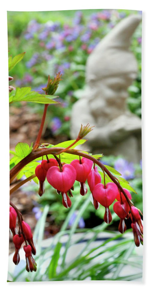 Sweet Beach Towel featuring the photograph Content Gnome With Bleeding Hearts by Marilyn Hunt