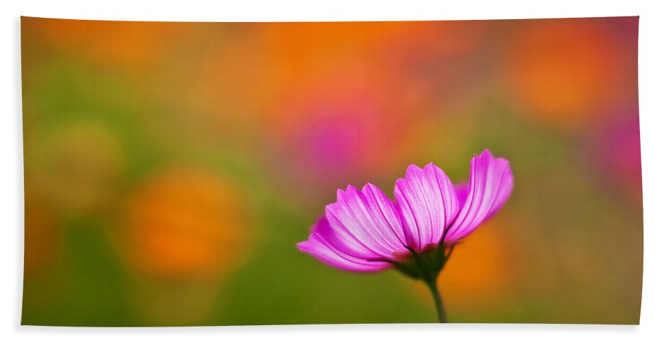 Cosmo Beach Towel featuring the photograph Cosmo Pastels by Mike Reid