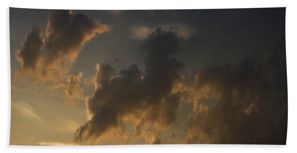 Sheep Beach Towel featuring the photograph Counting The Sheep Before Sleeping by Angel Ciesniarska