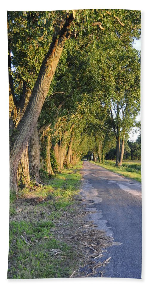 Road Beach Towel featuring the photograph Country Road by David Arment