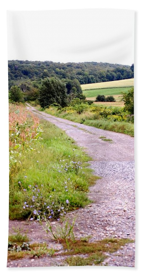 Old Barn Beach Towel featuring the photograph Country Road by David Lane