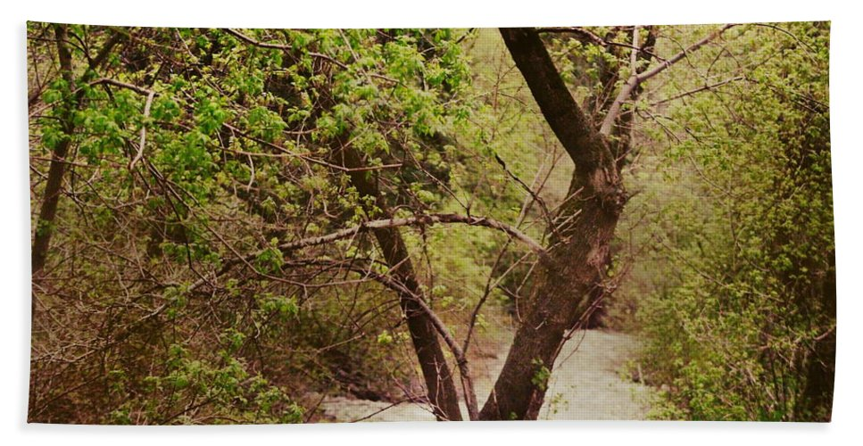 Dreamy Beach Towel featuring the photograph Cozy Stream in American Fork Canyon Utah by Colleen Cornelius