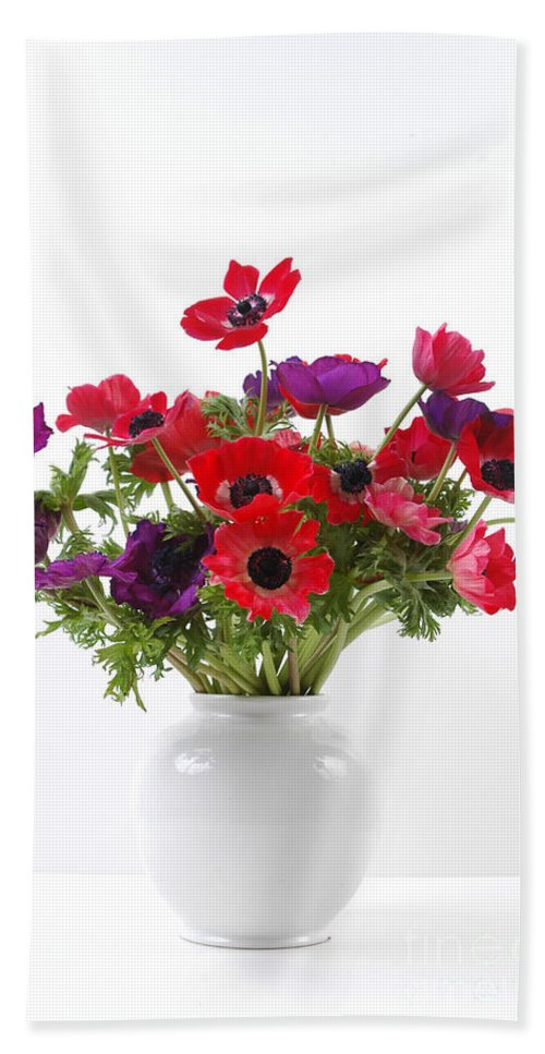 Flower Beach Towel featuring the photograph crown Anemone in a white vase by Ilan Amihai