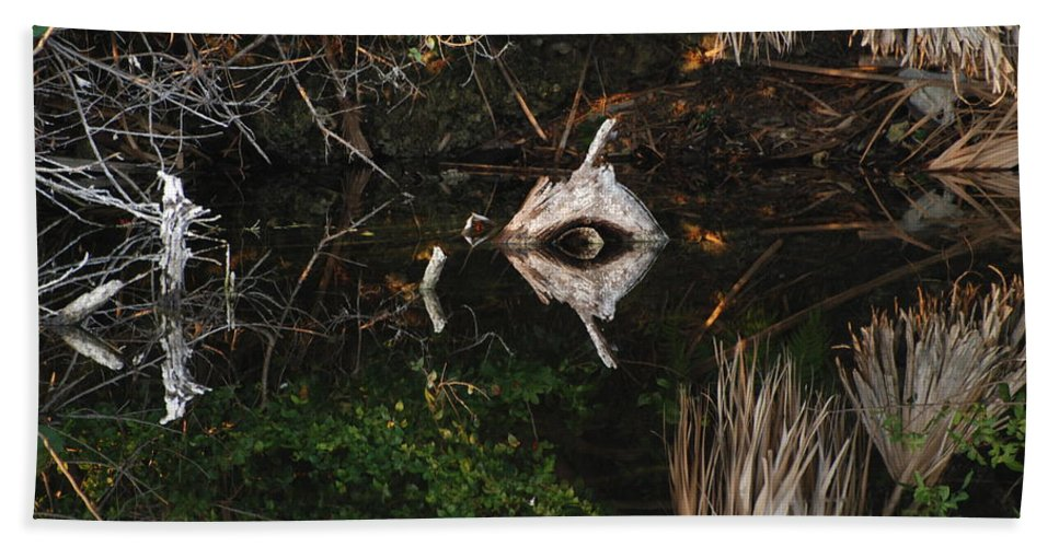 Green Beach Towel featuring the photograph Cyclops In Reflection by Rob Hans
