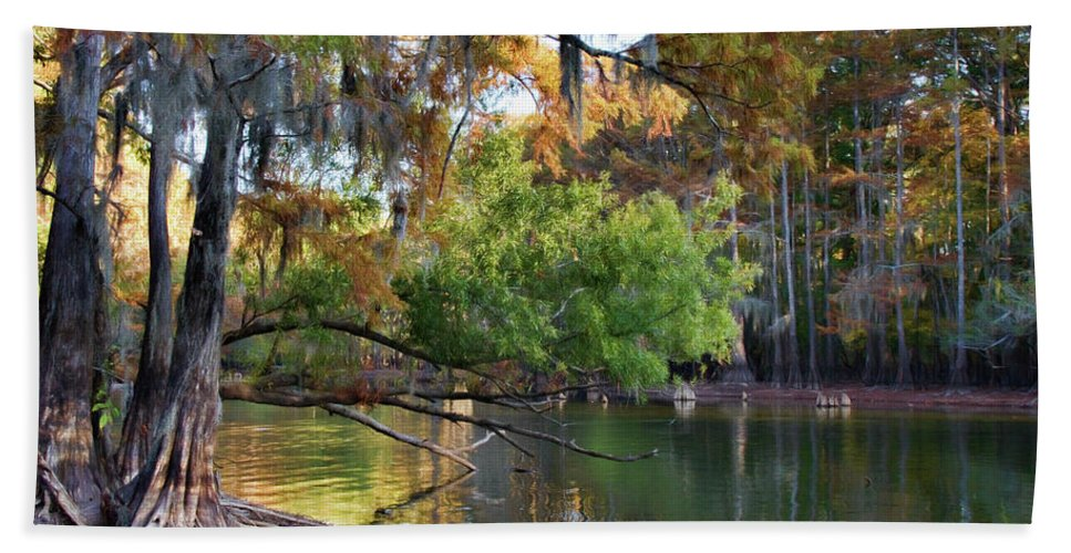 Spanish Moss Beach Towel featuring the photograph Cypress Bend by Lana Trussell
