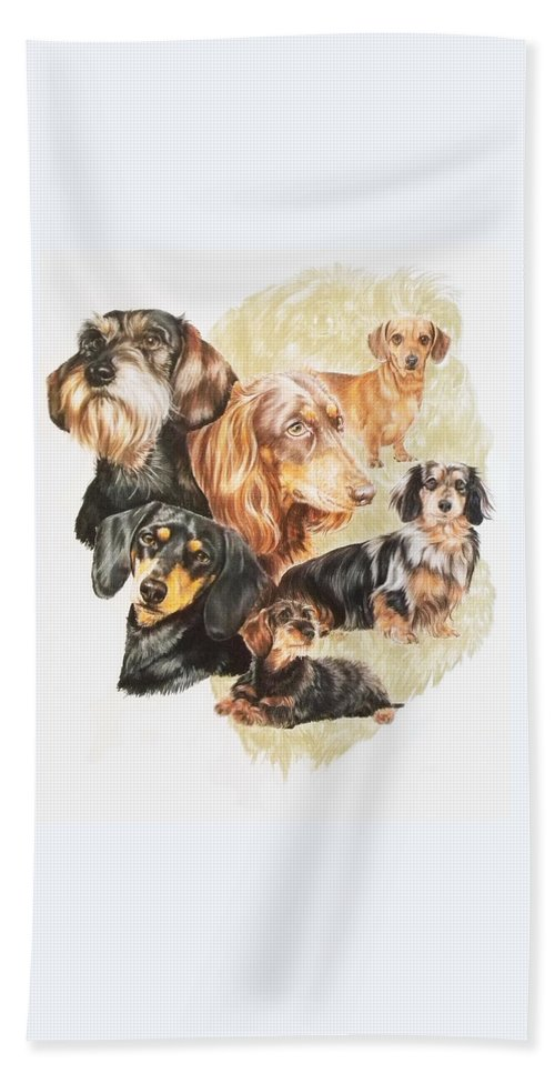 Purebred Dog Beach Towel featuring the drawing Dachshund Revamp by Barbara Keith