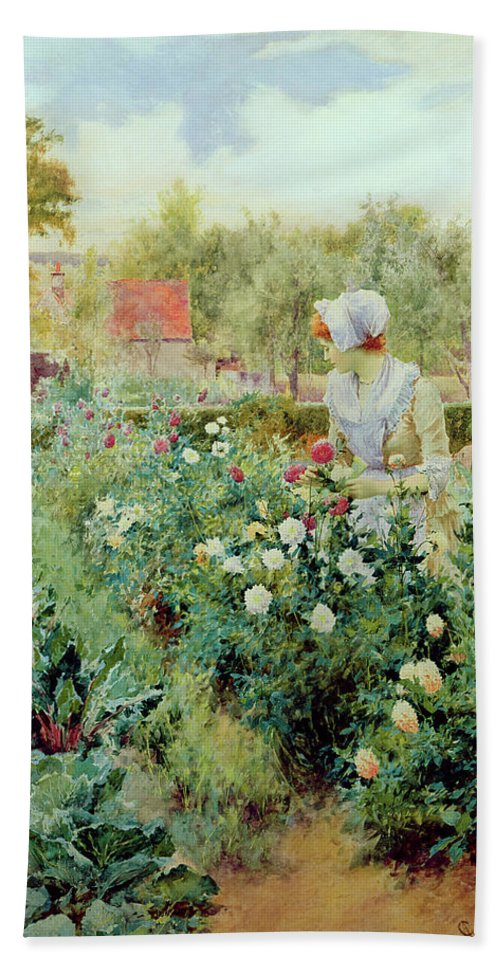 Dahlias Beach Towel featuring the painting Dahlias by Alfred Glendening