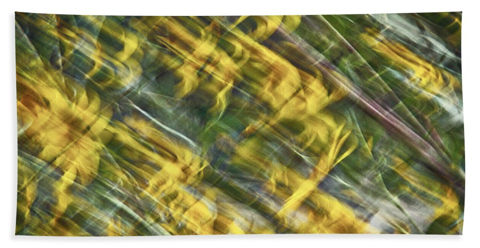 Daisy Beach Towel featuring the photograph Daisy Abstract by Stuart Litoff