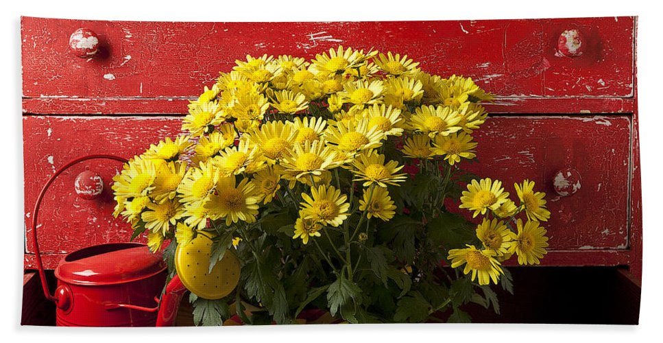 Daisy Beach Towel featuring the photograph Daisy Plant In Drawers by Garry Gay