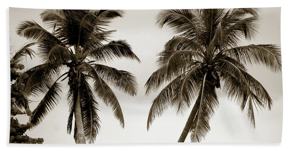 Palms Beach Towel featuring the photograph Dancing Palms by Susanne Van Hulst