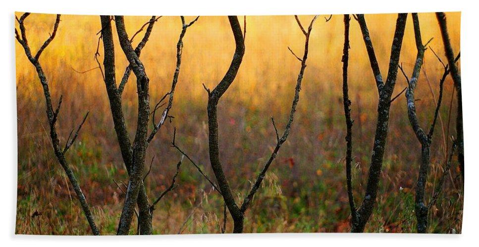 Dance Beach Towel featuring the photograph Dancing Trees by Randy Pollard