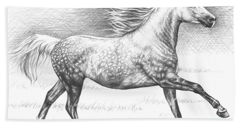 Horses Beach Towel featuring the drawing Dapple Grey Horse by Nicole Zeug