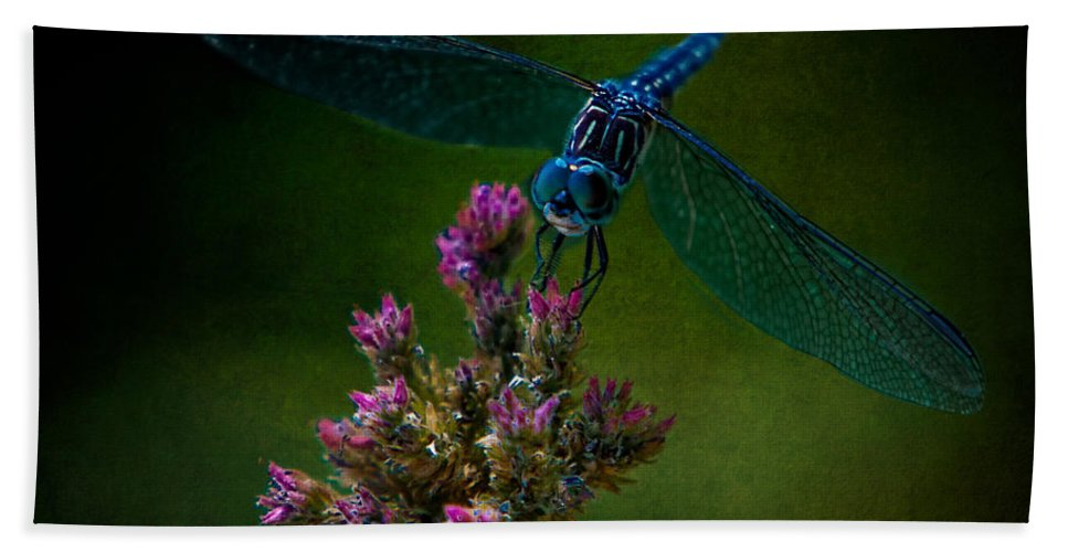 Dragonfly Beach Towel featuring the photograph Dark Dragonfly by Chris Lord