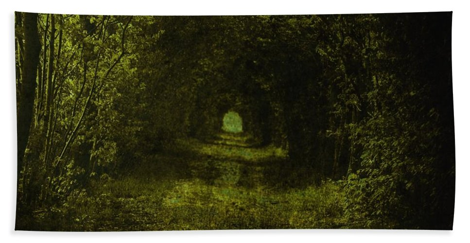 Forest Dark Wood Green Path Way Grass Tree Trees Fairy-tale Wizzard Texture Vintage Beach Towel featuring the photograph Dark Wood by Steve K