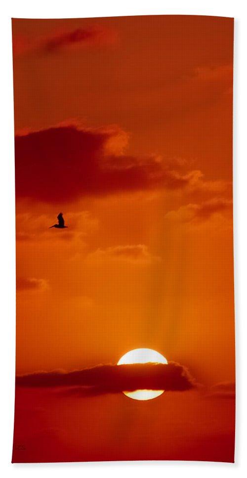 Pelican Beach Towel featuring the digital art Dawn Flight by DigiArt Diaries by Vicky B Fuller