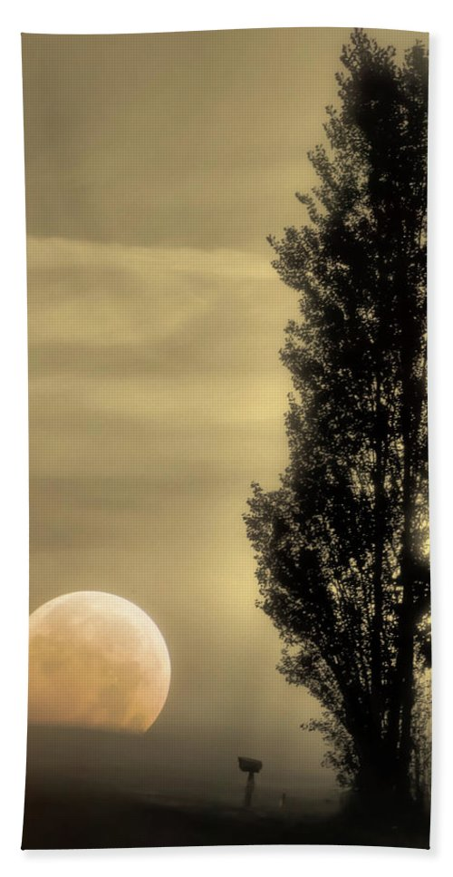 Country Road Beach Towel featuring the photograph Daybreak On A Country Road by Don Schwartz