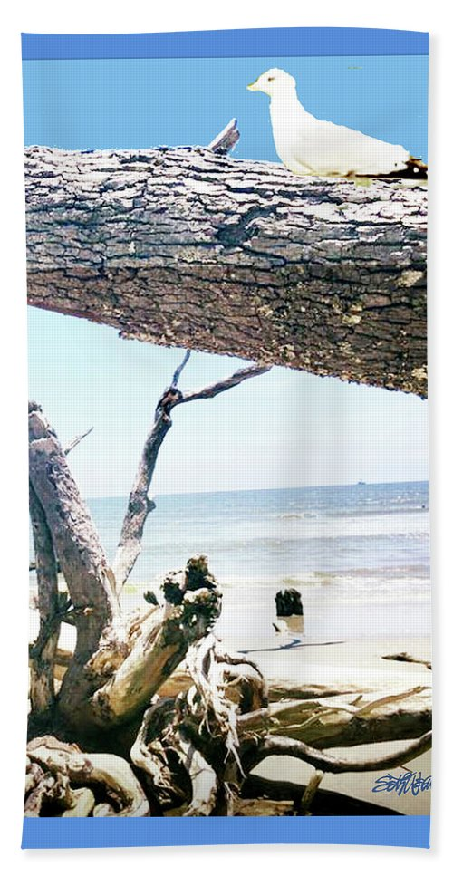 Daydreams And Driftwood Beach Towel featuring the photograph Daydreams and Driftwood by Seth Weaver