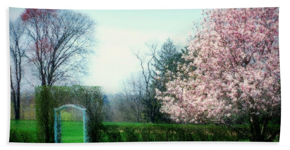 Cherry Blossoms Beach Towel featuring the photograph Daydreams by Diana Angstadt
