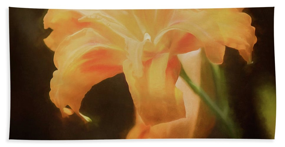 Daylily Beach Towel featuring the photograph Daylily Dream by Teresa Wilson