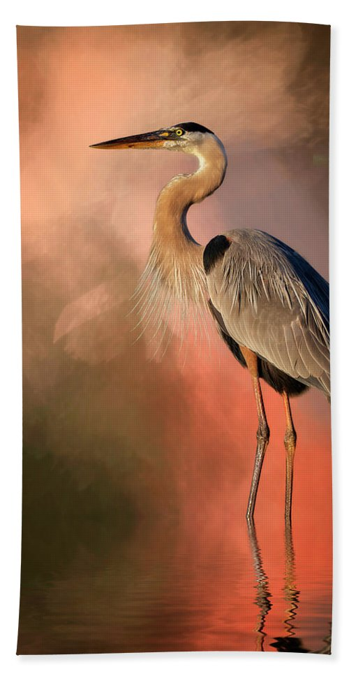 Stork Beach Towel featuring the mixed media Day's Fiery End by Cyndy Doty
