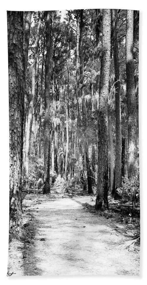 Canvas Beach Towel featuring the photograph Deep In The Woods by Phill Doherty