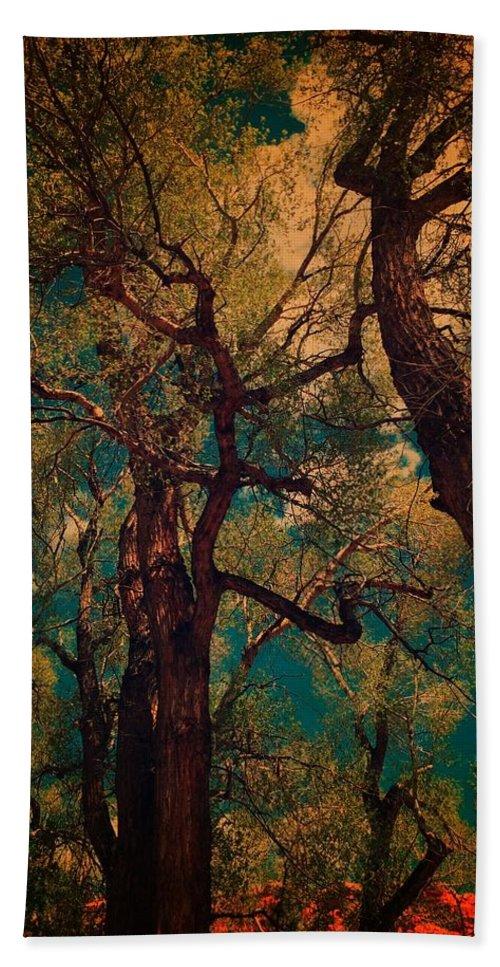 Trees Beach Towel featuring the digital art Deep Trees by Sarah Jane Thompson