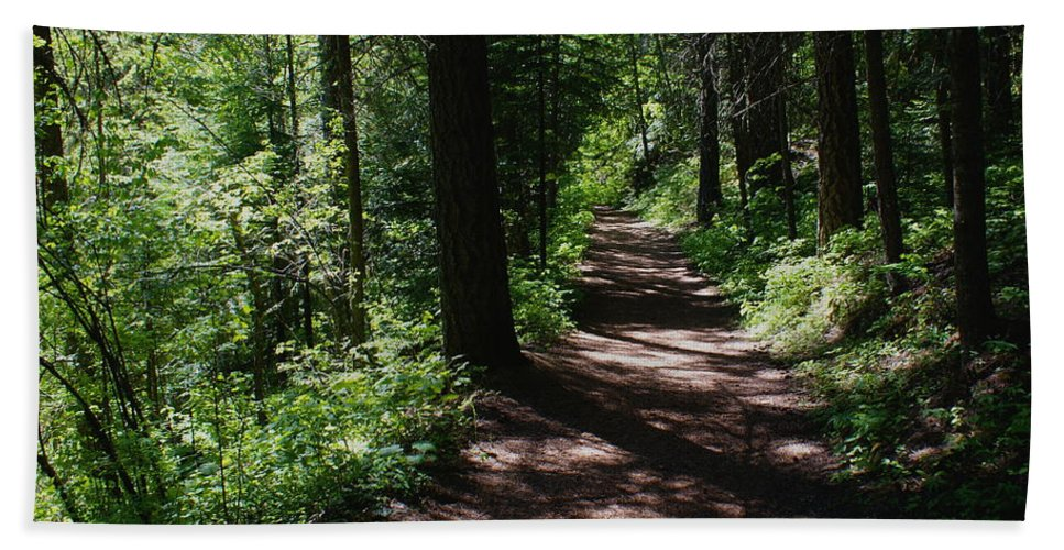 Nature Beach Towel featuring the photograph Deep Woods Road by Ben Upham III